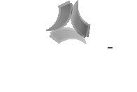 """Logo von """"Wewole Stiftung"""""""