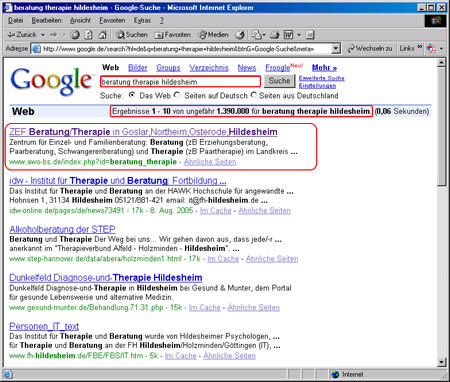 Screenshot Google Suchergebnisse