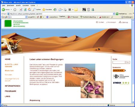 """Screenshot Website """"Sahara – Wüste lebt"""""""