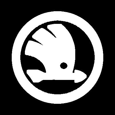 """Logo von """"SKODA Financial Services"""""""